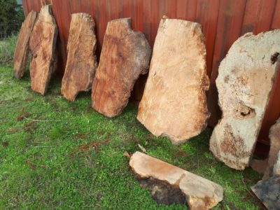 Burl wood timber slabs