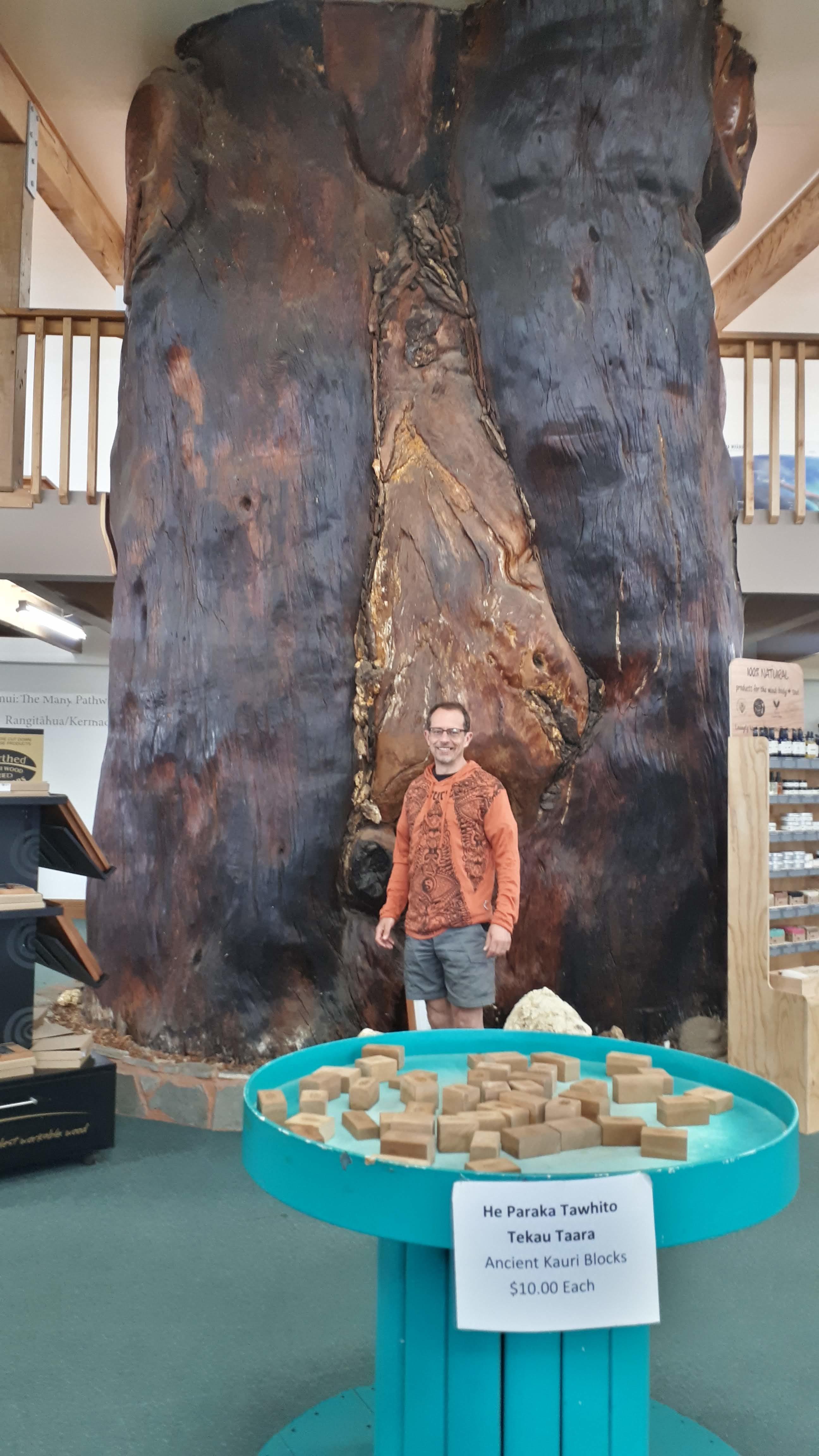 Kauri Giant