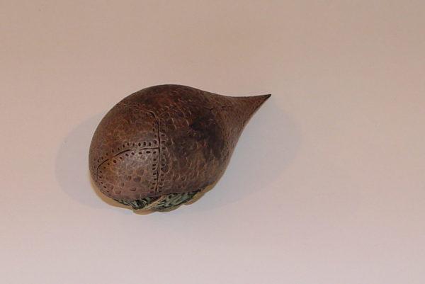 Kiwi Egg Back